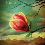 Music Monday: Shine + Pain