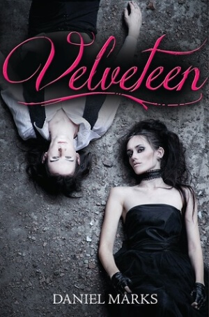 Waiting on Wednesday: Velveteen