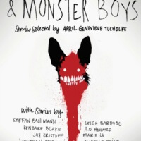 Slasher Girls & Monster Boys by April Genevieve Tucholke Gone with the Words Review